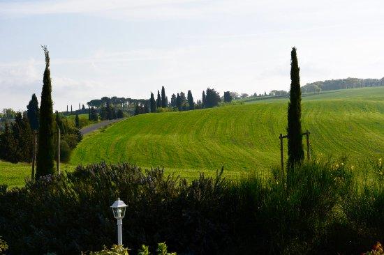 Monticchiello, Italy: Unique Tuscan view all around yourself.