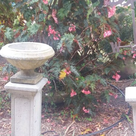 Sebring, FL: IMG_05242017_145311_large.jpg