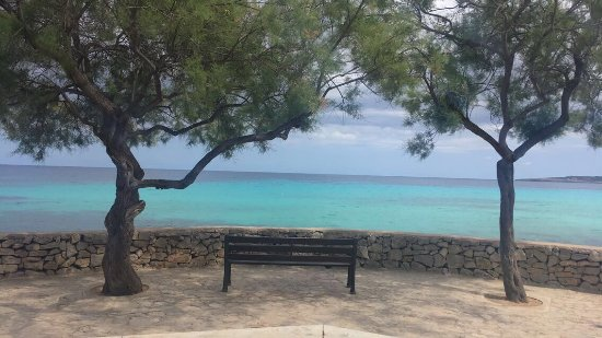 Protur Bonaire Aparthotel: photo4.jpg