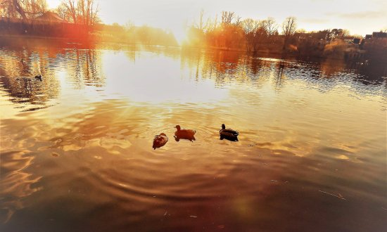 Diss, UK: The Mere