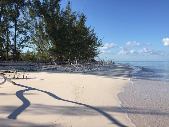 Shannas Cove Resort : photo6.jpg