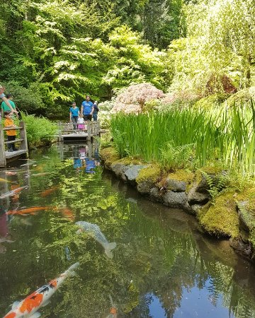 Portland Japanese Garden: IMG_20170510_074855_501_large.jpg
