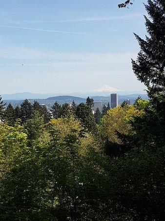 Portland Japanese Garden: 20170509_132458_large.jpg
