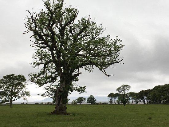 Applecross, UK: photo0.jpg