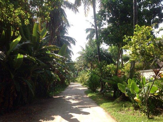 Kuramathi Island Resort: Our second visit need I say more