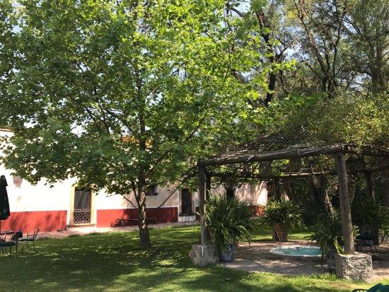 Lagos de Moreno, Mexico: photo3.jpg