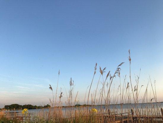 Terherne, Pays-Bas : photo2.jpg