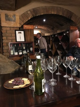 Singita Boulders Lodge: I'm in the Wine Cellar, checking out the Pinotage collection.