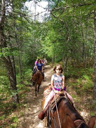 Rhinelander, WI: Gentle horses even for the smaller riders