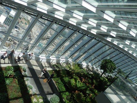 terrazza coperta - Picture of Sky Garden, London - TripAdvisor