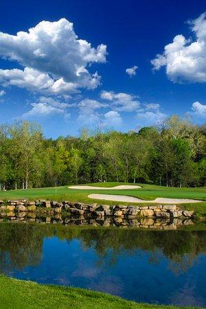 Reeds Spring, MO: hole 6