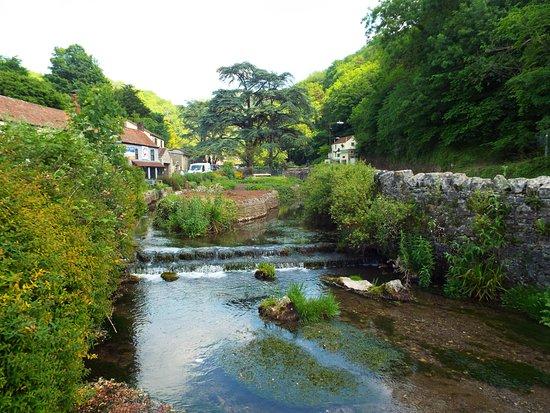 The stream running through Cheddar