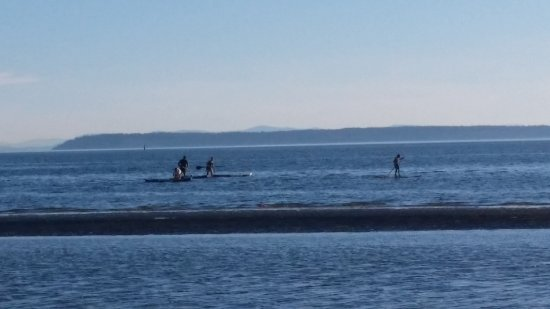 Surrey, Canada: Paddle boarders paradise