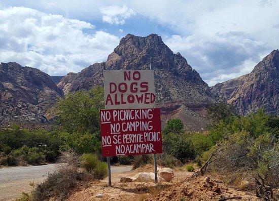 Blue Diamond, เนวาด้า: Entrance sign at Bonnie Springs Old Nevada