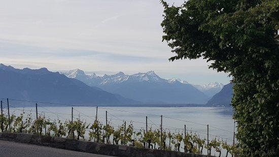 Chexbres, Schweiz: 20170523_072329_large.jpg