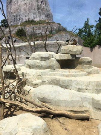 Parc zoologique de Paris : photo3.jpg