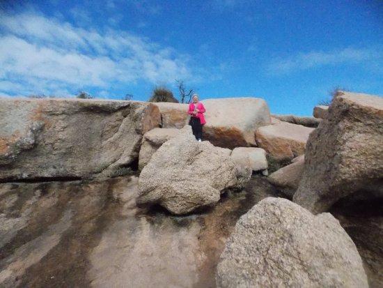Enchanted Rock State Natural Area: climbing rocks