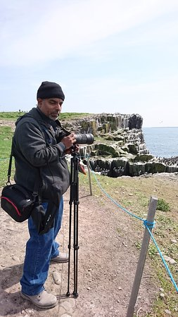 Farne Islands: Photographing the Puffins
