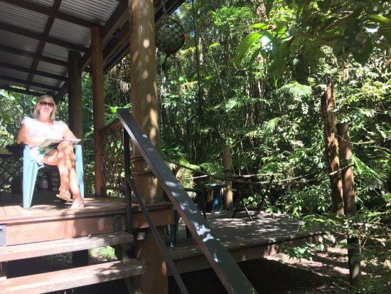 Yungaburra, Australia: A little bit of sun at lunchtime. But deep dark in the jungle.