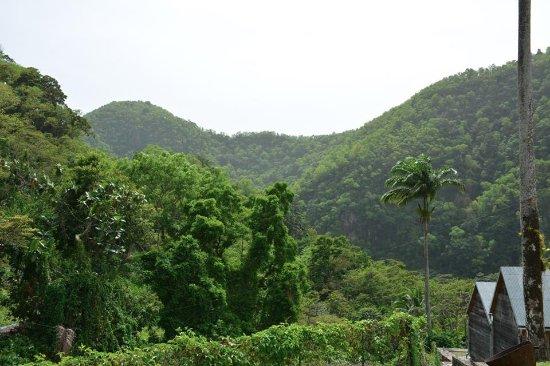 Vieux-Habitants, Guadeloupe: Vue sur les montagnes