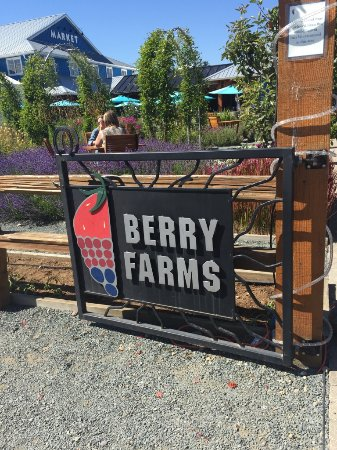Langley City, Canada: Berry farm