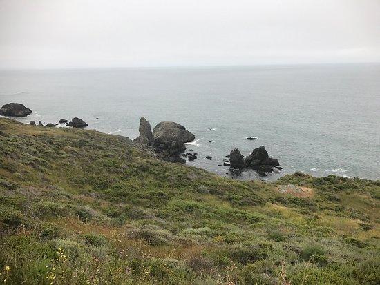 Muir Beach, Kalifornien: photo4.jpg