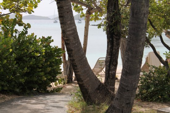 Caneel Bay, St. John: beach view at lunch