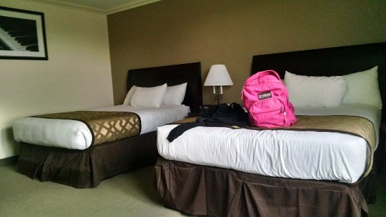شيكاجو ساوث لووب هوتل: Spacious, clean rooms.