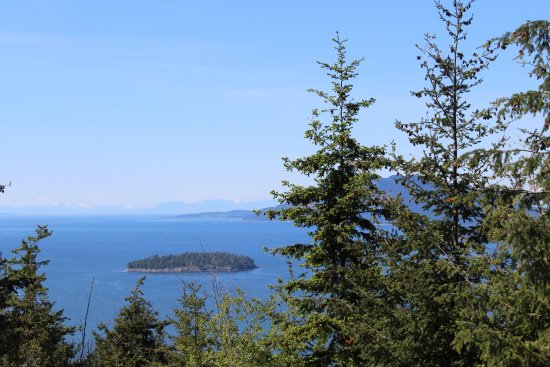 Anacortes, WA: One of the many views from the summit