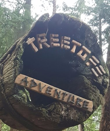 North Vancouver, Canada: Tree park adventure for kids ; fun