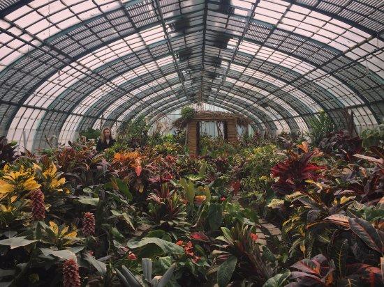 Jardin des serres d'Auteuil : one of the greenhouses
