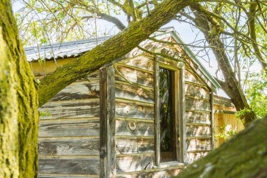 Wanaka, Yeni Zelanda: Farm Hut