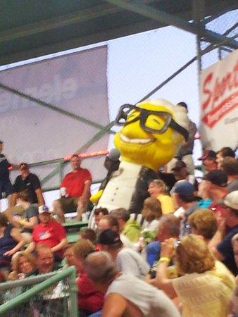 Wisconsin Rapids, WI: bleacher creatures!
