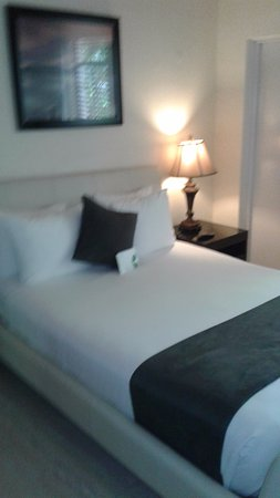Tradewinds Apartment Hotel Görüntüsü