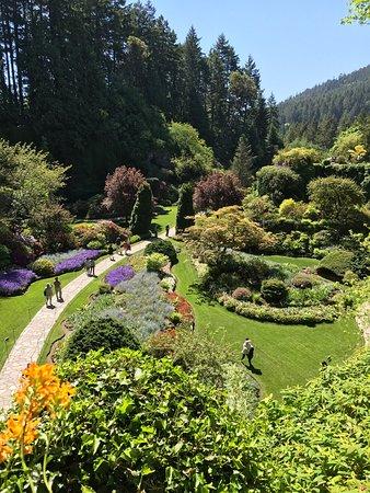 Butchart Gardens: photo5.jpg