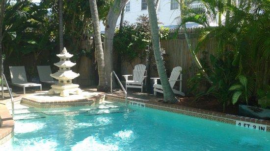 Douglas House: Beautiful pool area!