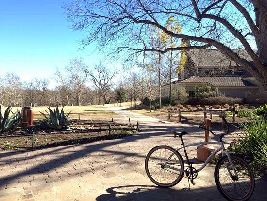 Cedar Creek, TX: photo5.jpg