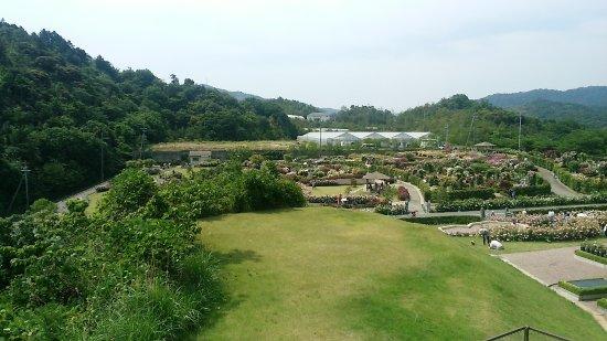 Sennan\ Coty Agricultural Park Hanasaki Farm