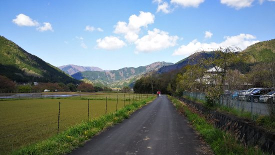 Nantan, Japan: rice paddy along the river