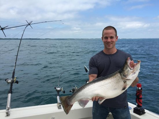 Brown Trout caught off of Sheboygan by Hi-Tech Charters