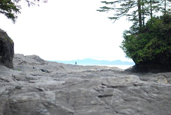Port Renfrew, Canadá: looking south to the olympics, south beach, bipedal mammal, and forested hummock
