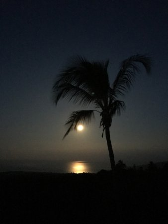 Kona Bayview Inn Bed and Breakfast: Full moon setting.