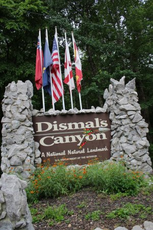 Haleyville, AL: Greetings from Dismal Canyon