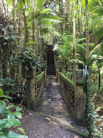 Mena Creek, Australia: Paronella Park