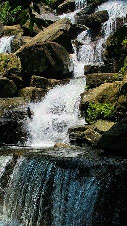 Yatiyantota, Sri Lanka: FB_IMG_1495681489492_large.jpg