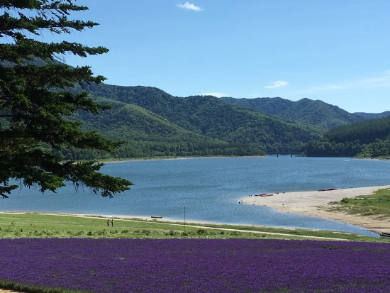 Lake Kanayama Forest Park