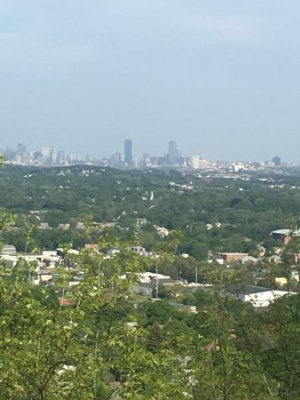 Waltham, MA: Prospect hill
