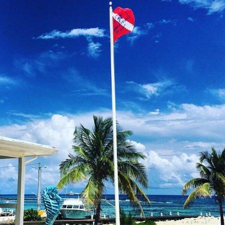 Cayman Brac: 2156_large.jpg