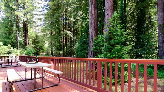 Northwood Lodge & Resort: Cottage deck