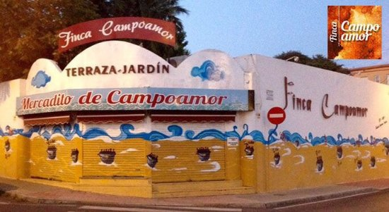 how to get to alicante from campoamor